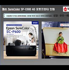 엡손SureColor SP-C600 A3포토프린터 사진인화